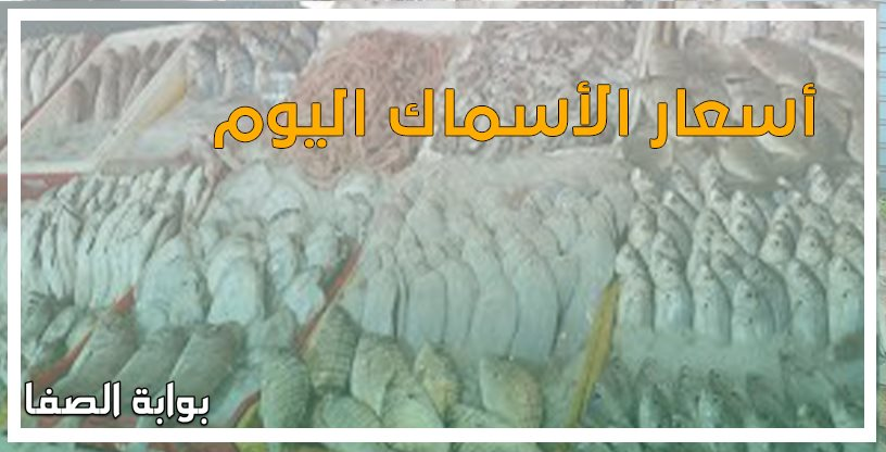 أسعار الأسماك اليوم الثلاثاء 19-5-2020 بسوق العبور
