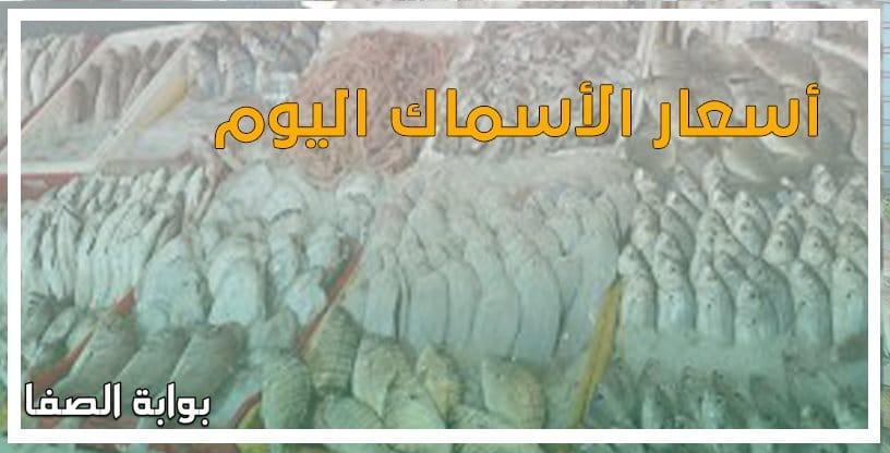 أسعار الأسماك اليوم الجمعة 12-6-2020 بسوق العبور