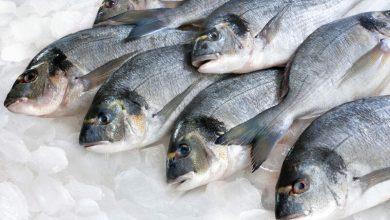 صورة اسعار الاسماك بسوق العبور اليوم الأربعاء 6-1-2021