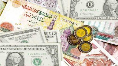 صورة استقرار اسعار العملات امام الجنيه المصري بمختلف البنوك اليوم الأربعاء 6-1-2021